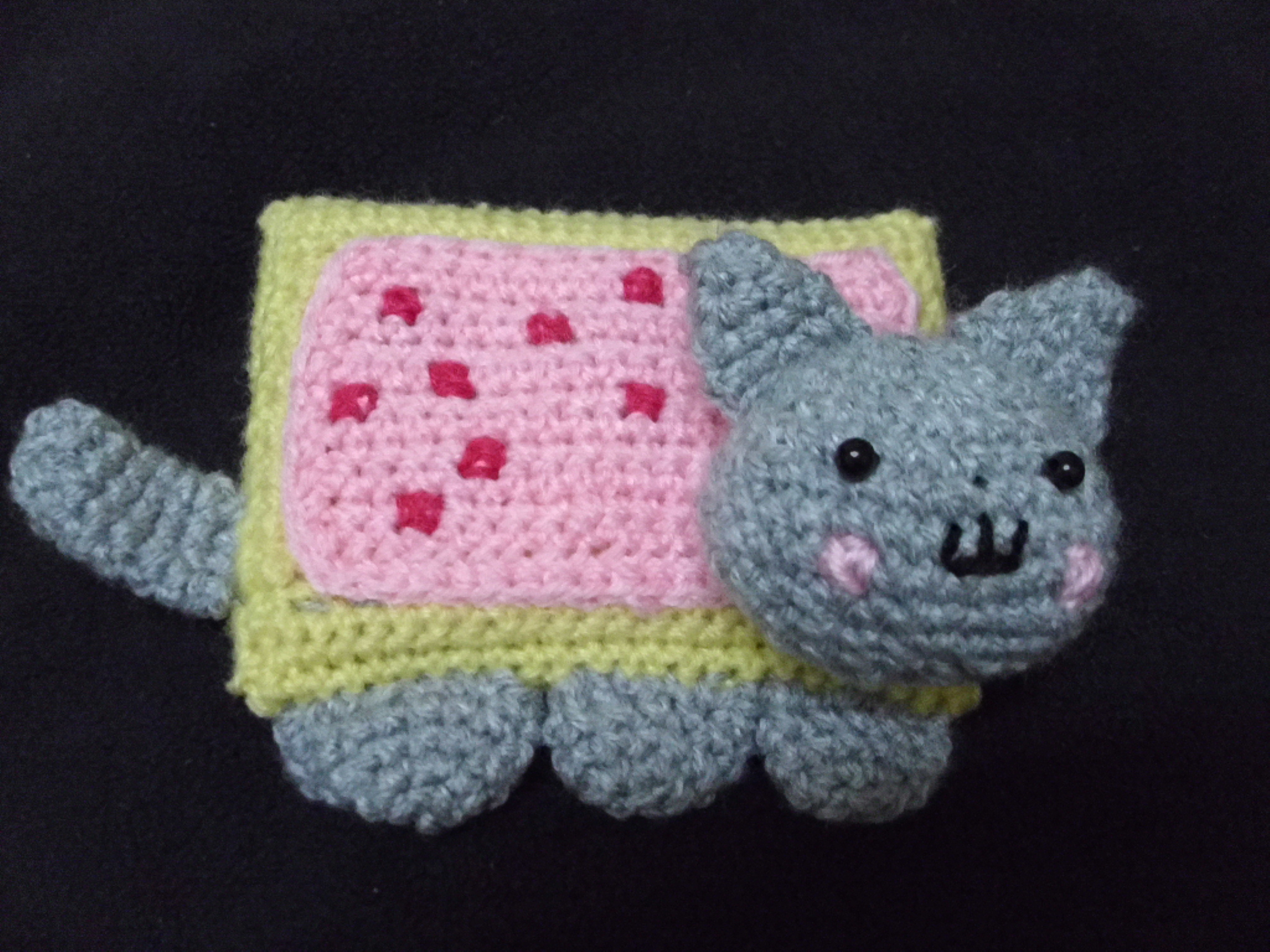 Nyan Cat crocheted purse by Lithiumcarbonat on DeviantArt | 1536x2048